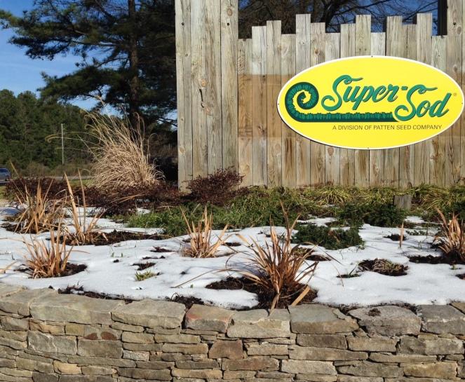 Snow 2016 Sign
