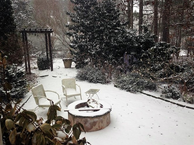 garden-in-snow-2014